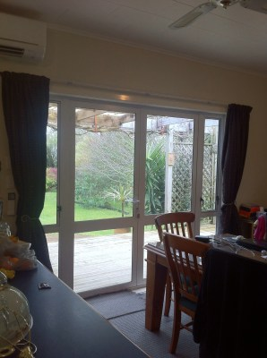 Now - looking out one of the dining room french doors