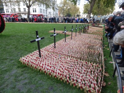 Little crosses in place in rememberance of the lives lost