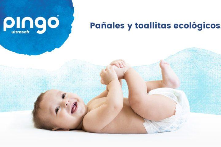 nueva web de Pingo 2021