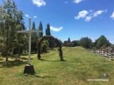 CarreteraAustral_5092