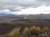Peru2_04016