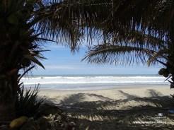 Peru2_04106