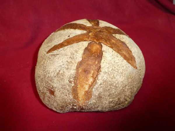 Wheat sourdough cob