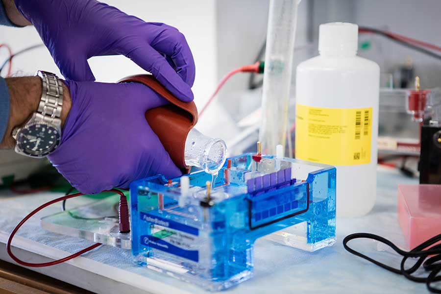 Laboratory research in 2018 focused on pancreatic cancer risk factors and early detection
