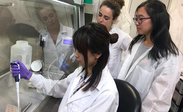 Pancreatic cancer researcher demonstrates lab technique for two trainees