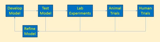 Cancer Model Development Flowchart