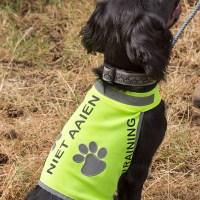 Honden_trainingsvest-trainingsvest_hond-reflecterend-hondenhesje_hesje-hulphond