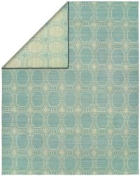 Light Blue Ivory area rug
