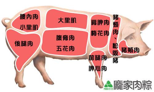豬肉各個部位的差異