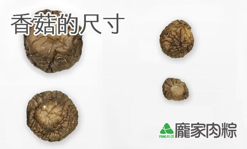 81-00包粽子香菇的尺寸