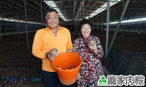 龐奶奶與菇農的合影