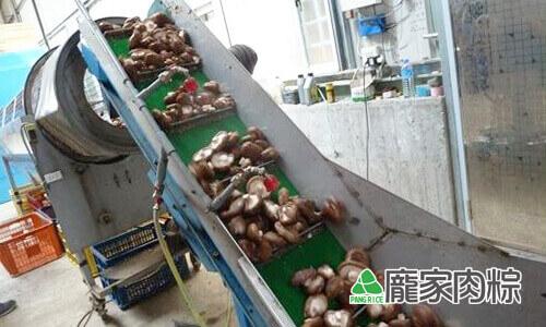 82-09開始篩選香菇的大小