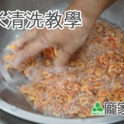 95-00蝦米清洗教學