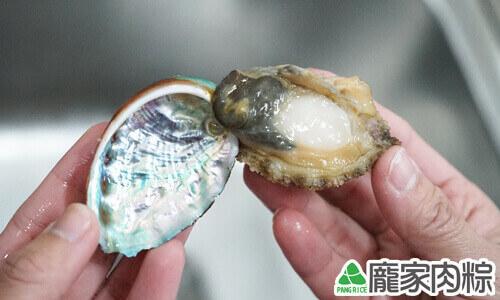 100-04鮑魚與殼相連的部位就是貝柱
