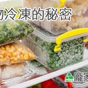 107-00粽子為什麼要冰冷凍庫保存,冰箱食物零下18度C的秘密(肉粽知識推薦)