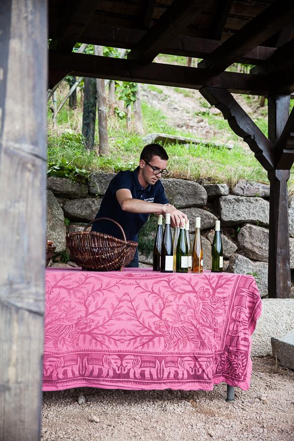 Les Rieslings vins d'Alsace©AnneDemayReverdy107