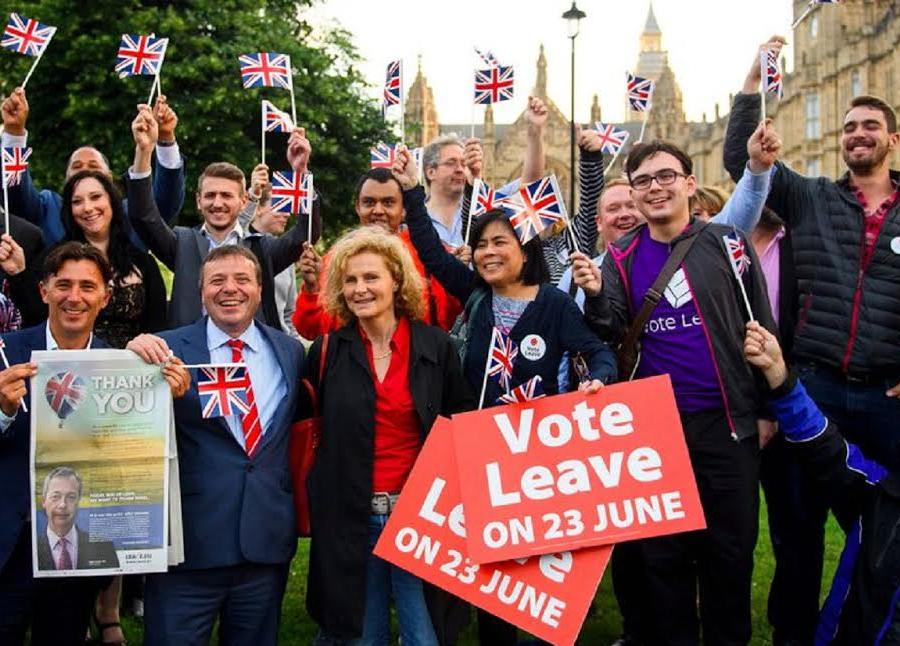 Hasil gambar untuk youth for brexit