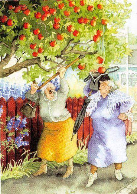 palla äpplen