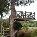 Balkong i träd