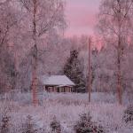 vacker vinter bild