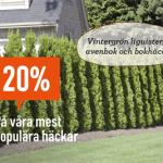 20% rabatt på häckar hos Granngården
