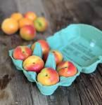 Förvara frukt i väskan