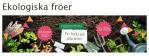 Ekologiska fröer med 20-70% rabatt