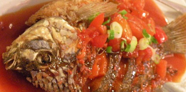 Tilapia With Tomato Sauce Recipe
