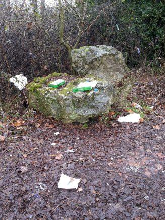 6. Litter at Pound Field Walk