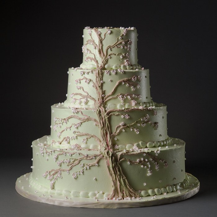 Matrimonio Tema Albero Della Vita : Matrimonio tema albero della vita panorama sposi
