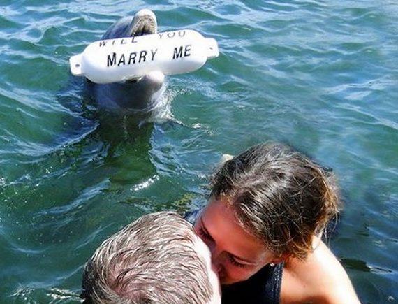 proposte di matrimonio più originali