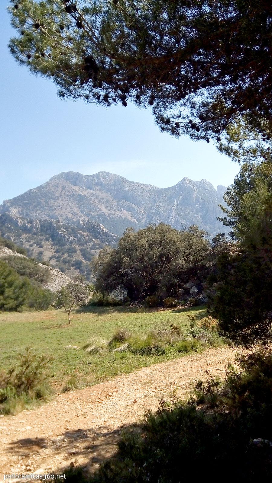 Puig Campana desde cerca del Mas de la Carrasca