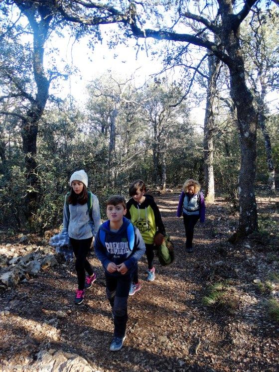 Subiendo por la senda de las Carboneras