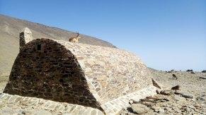 Cabra montés en el refugio de la Caldera