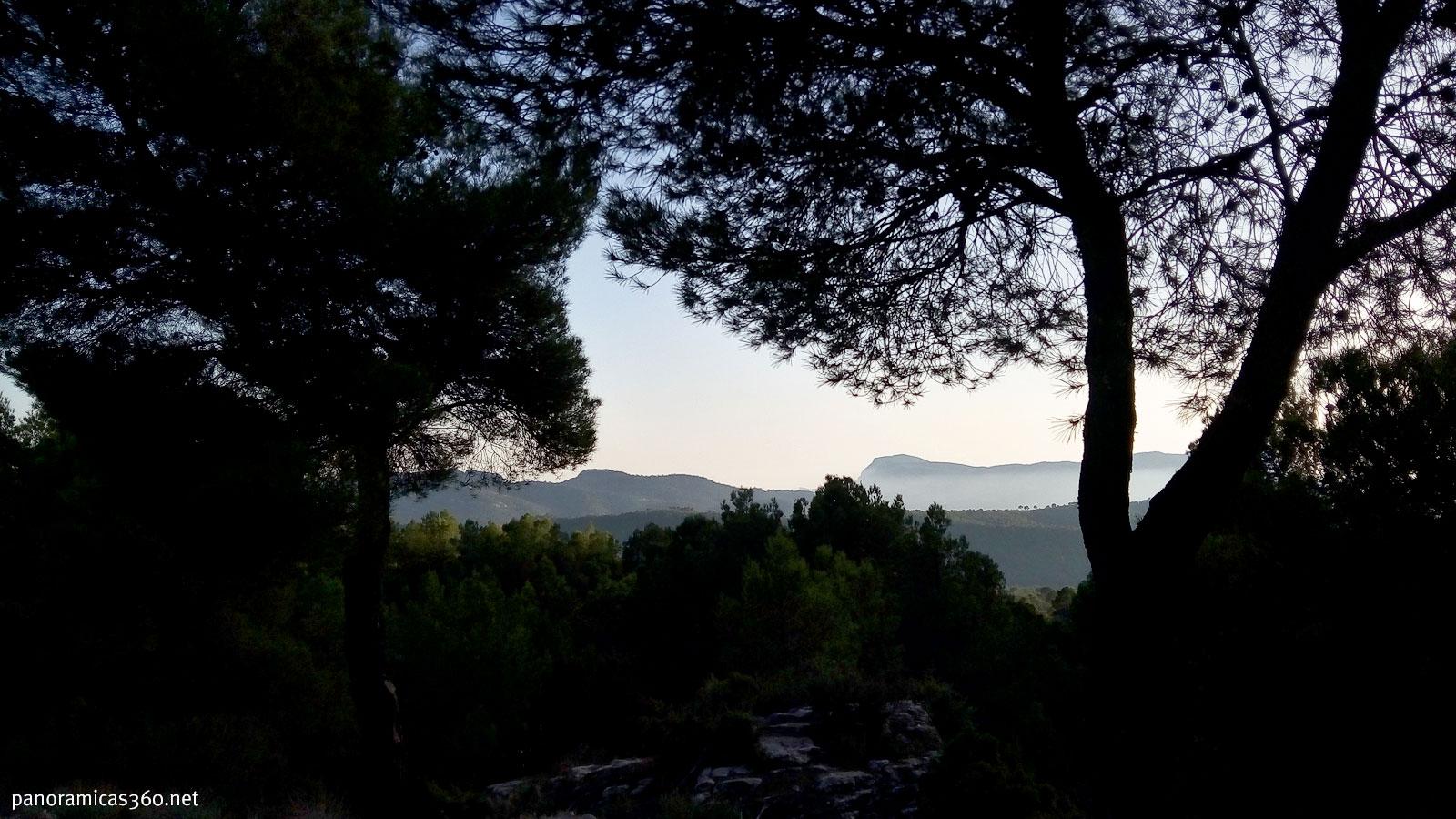 Sierra del Cid encuadrada entre los árboles