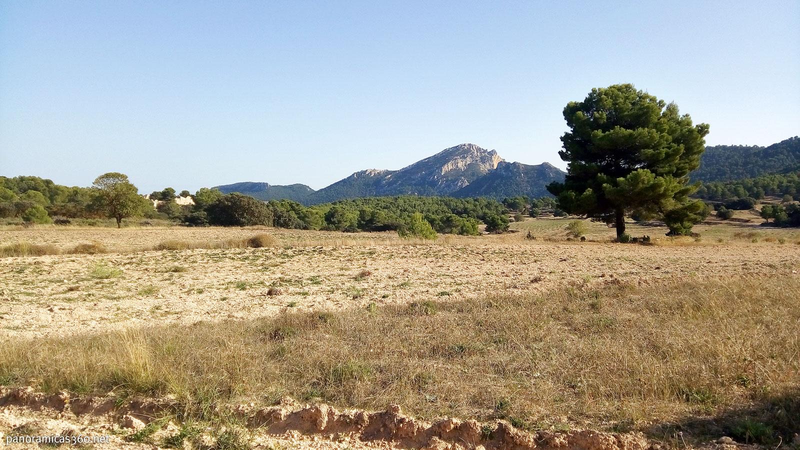 Maigmó visto desde Els Planisses