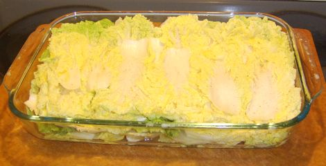 Cabbage and salt in layers