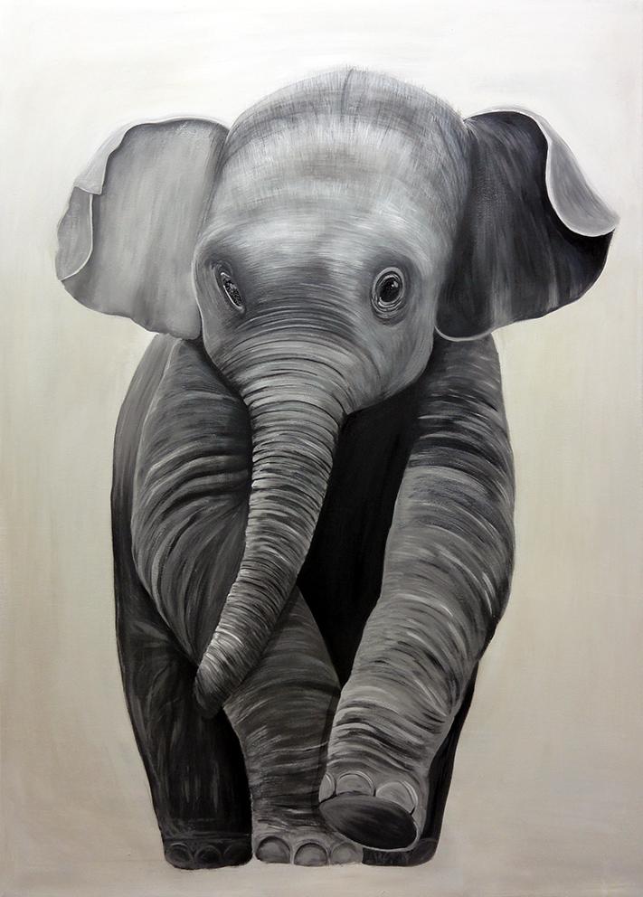 Elefante_web