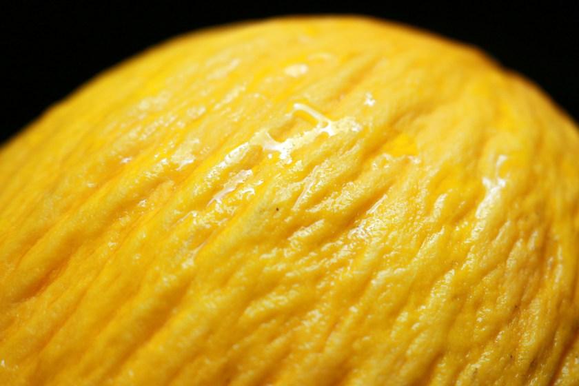 "alt=""Melone"""