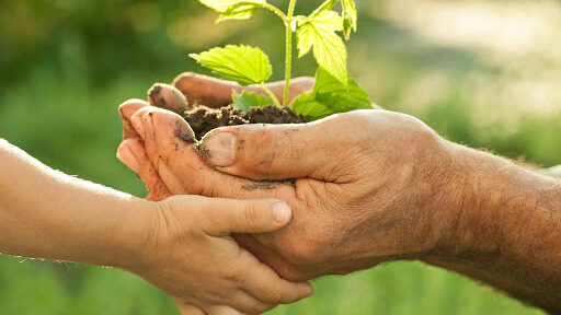 Agricoltura e ricambio generazionale