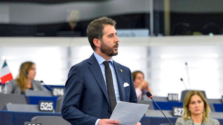 Paolo BORCHIA in the EP in Strasbourg