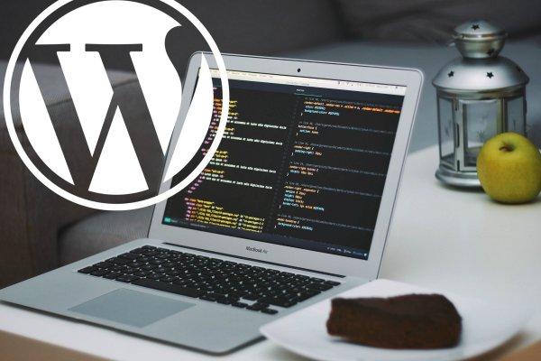 guida wordpress