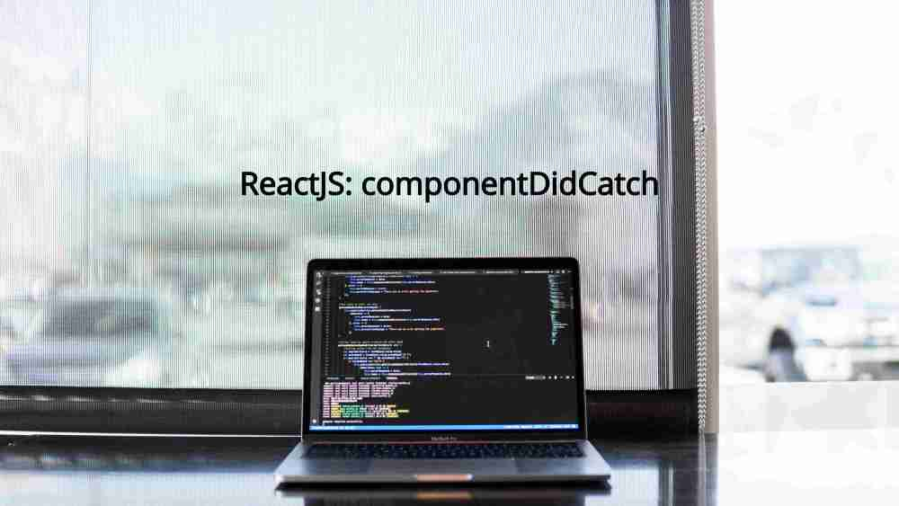 cos'è componentDidCatch