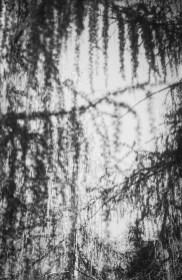 paolodurandettoart-cadescenza-1