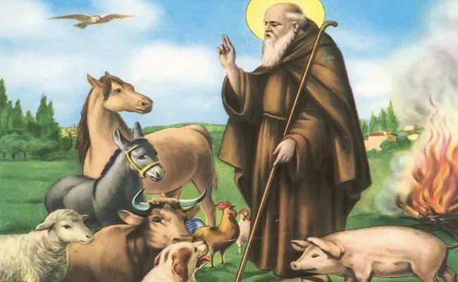 La Preghiera Per Benedire Gli Animali Che Abbiamo In Casa