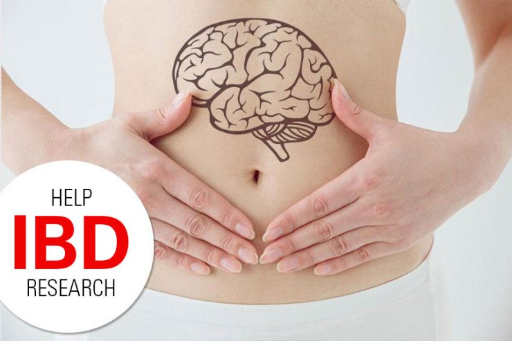 ibd reasearch