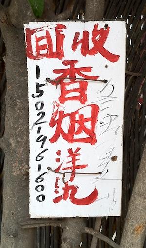 курьез: 收洋氿 №4
