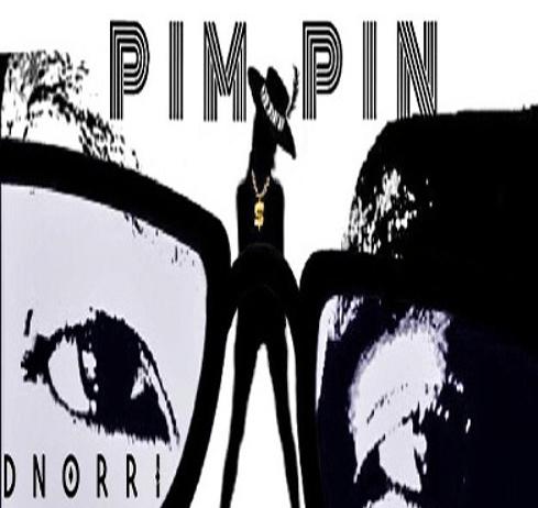 Track: Dnorri – Pim Pin