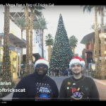 Video: Mega Ran And Bag Of Tricks Cat – Christmas Business | @megaran @bagoftrickscat @chundertoons