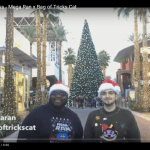Video: Mega Ran And Bag Of Tricks Cat – Christmas Business | @megaran @bagoftrickscat @chundertoons